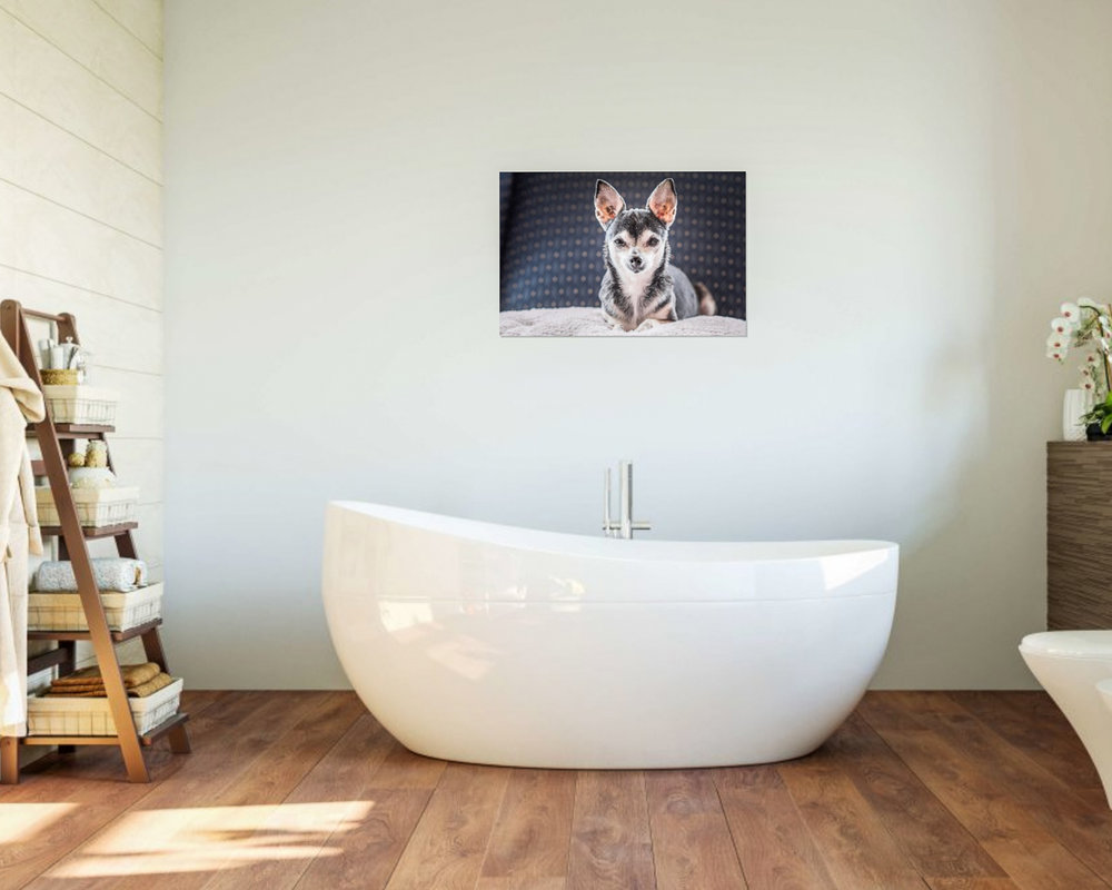 "A metal wall portrait of your bestie - in the bathroom. 20""x30"" piece."
