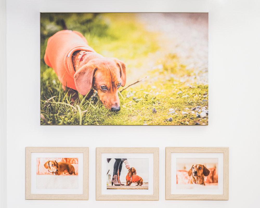 "Custom wall gallery: 30"" canvas and custom framed fine art print collage"