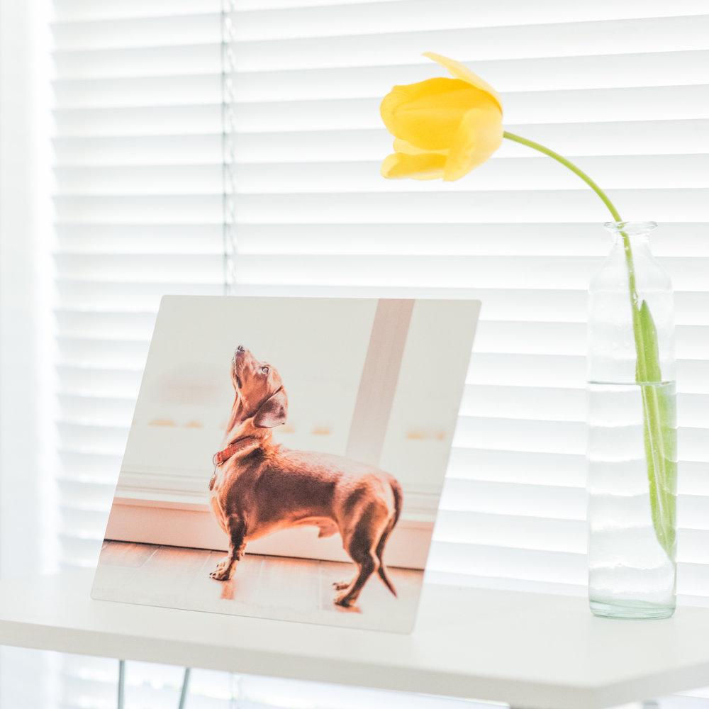 Durable and modern desktop art!