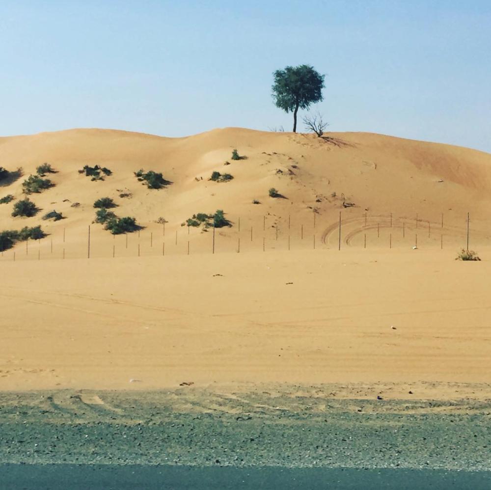 Ras Al Khaimah
