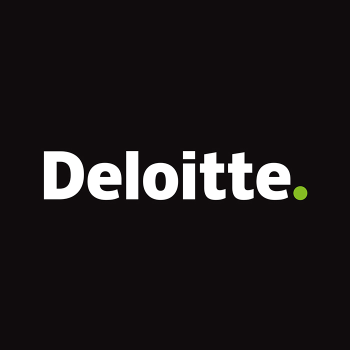 2016 Deloitte Undergraduate Case Competition - Philadelphia, PA |Finalist
