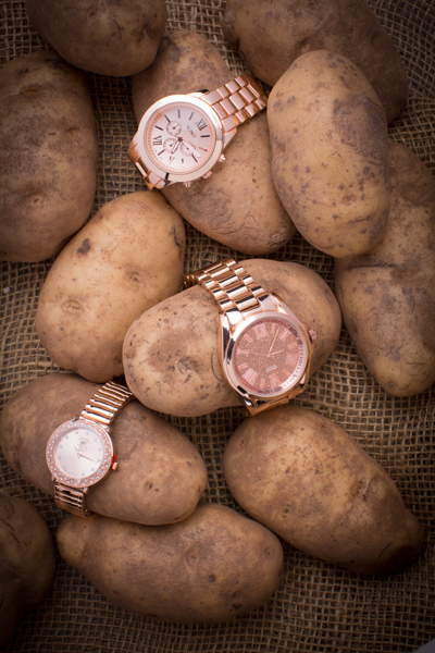 Running for the Rose Gold Watches: XOXO, Jessica Carlyle, Beverly Hills Polo Club