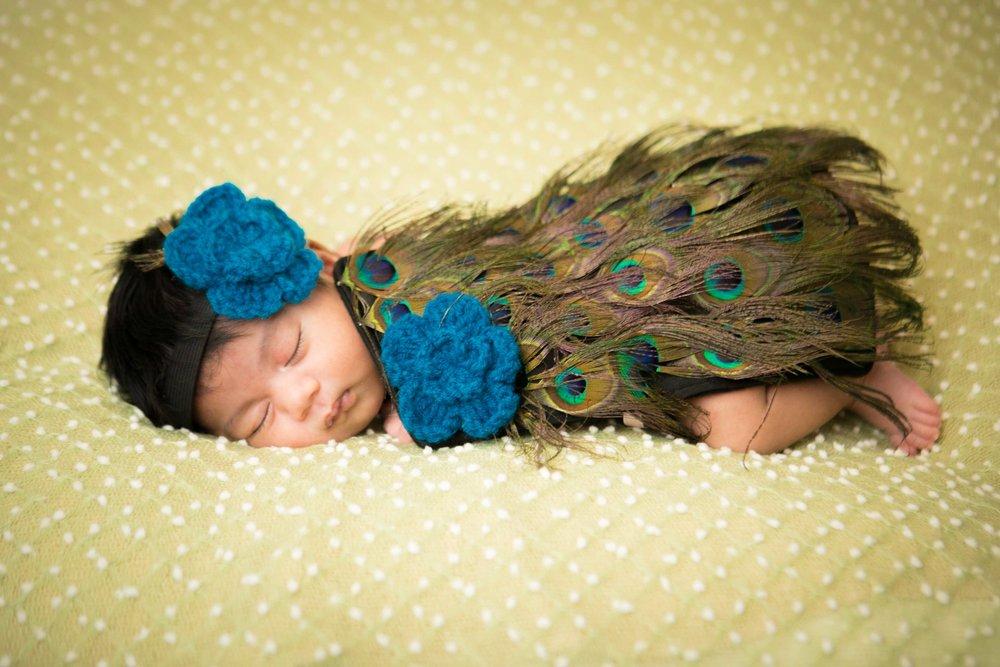 Newborn-Baby-Photographer-NZ-6.jpg