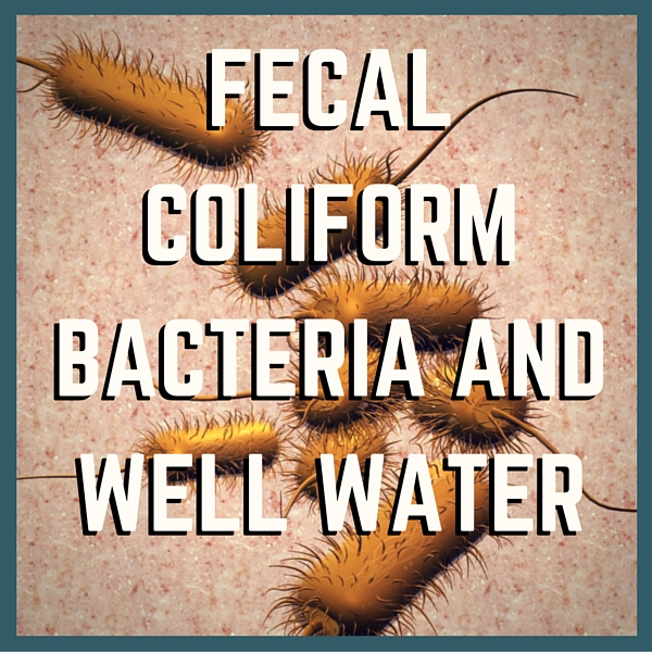 Testing For Fecal Coliform Bacteria in Well Water