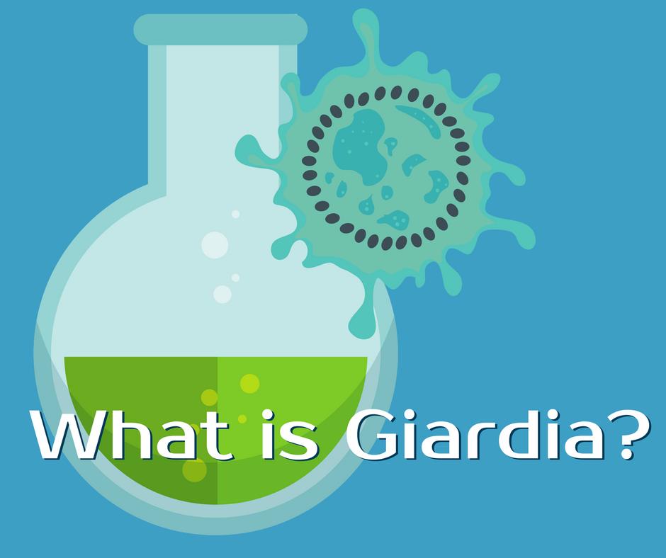 giardia in drinking water