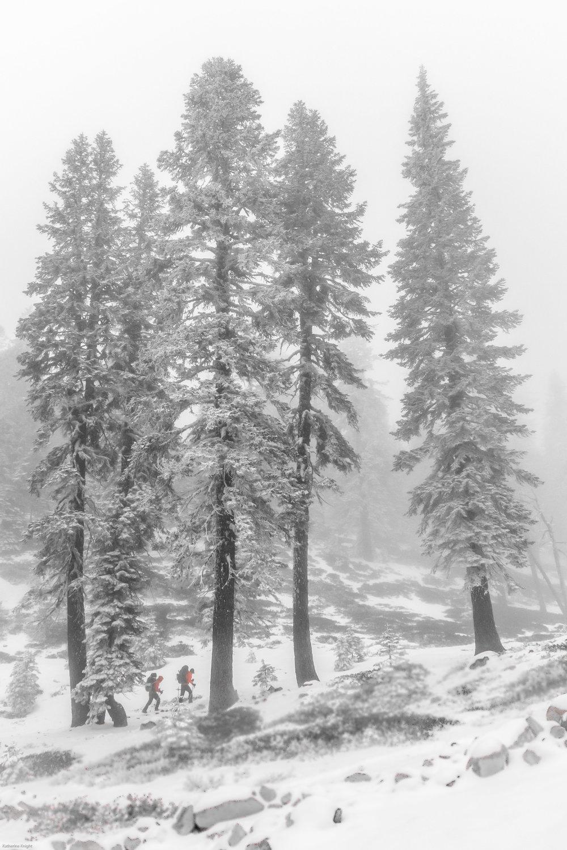 Mount_Shasta_14_04_26_8-2.jpg