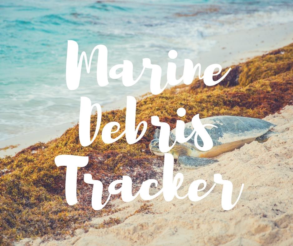 Debris_tracker.jpg