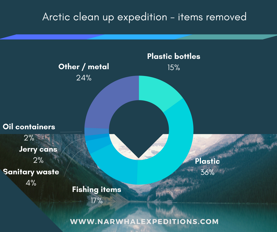 Arctic plastic pollution data