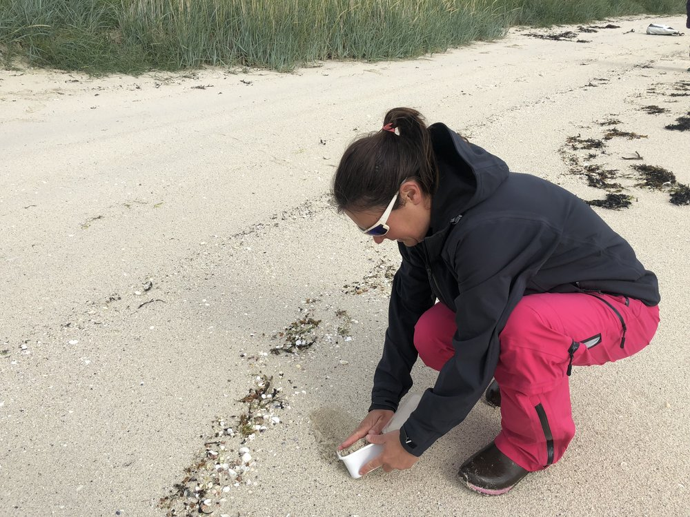 Micro plastics sampling in the arctic