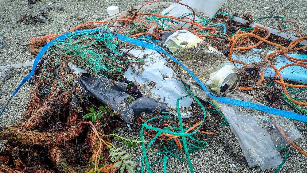 Plastic pollution in the arctic