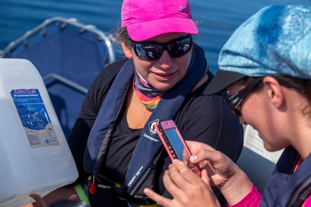 Entering floating debris into the Marine Debris Tracker app