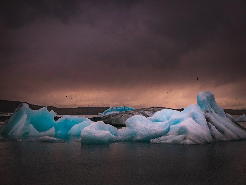 Arctic-expedition-1.jpg