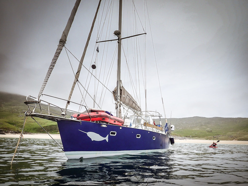 Expedition_yacht_Narwhal_2.jpg
