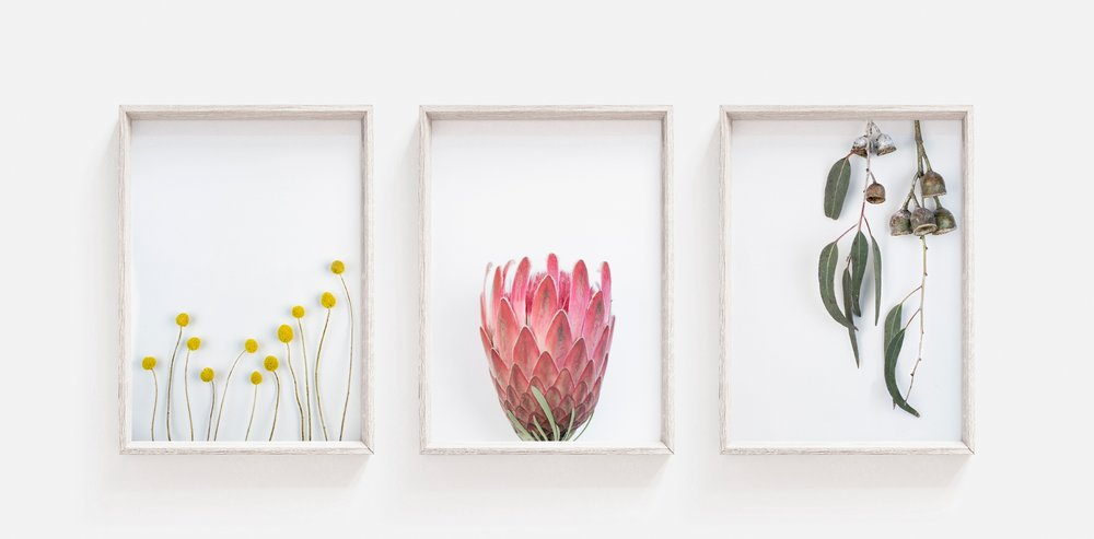 Trio Frame #1_WEB.jpg
