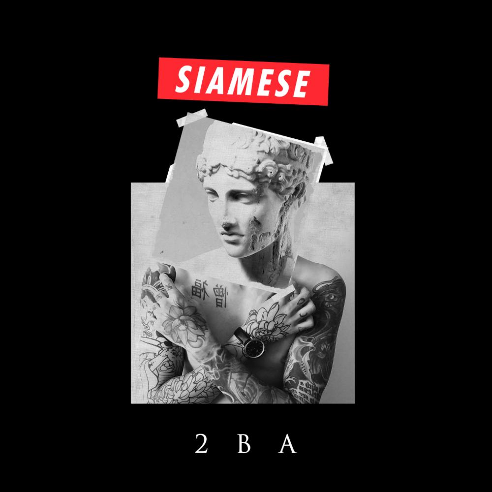 Siamese Tour.png