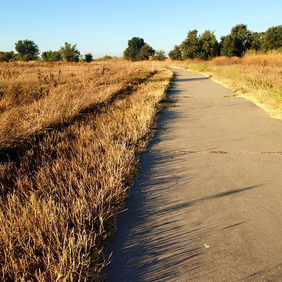Cosumnes River Preserve, which is technically in my backyard :D