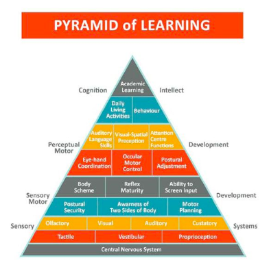 Pyramid of Learning. Top of pyramid: Academic learning, followed by Daily living skills, motor skills, sensory motor, sensory, and central nervous system.
