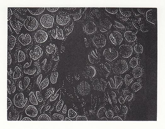 Leonie Bradley Untitled.jpg