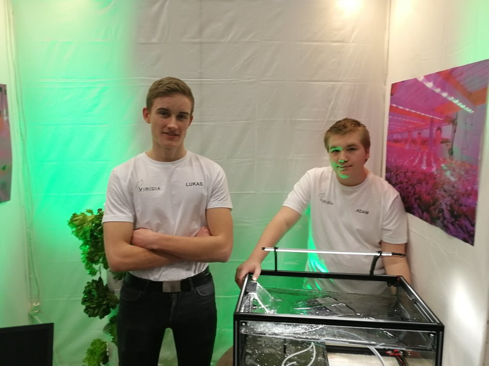 Lukas Segerblad (t.v),Adam Kamsvåg, Mathias og Markus Wauger-Molina (ikke på bildet)satset på hydroponi, en dyrkingsmetode der plantene gror direkte i vann, uten jord.