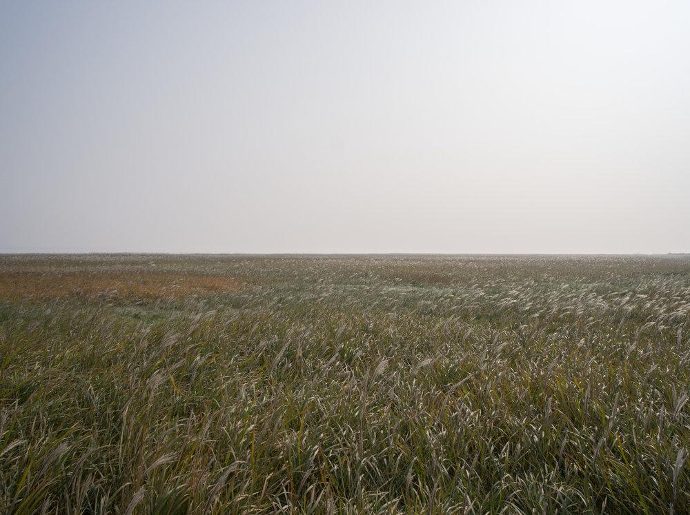 Zhonghuchi grassland