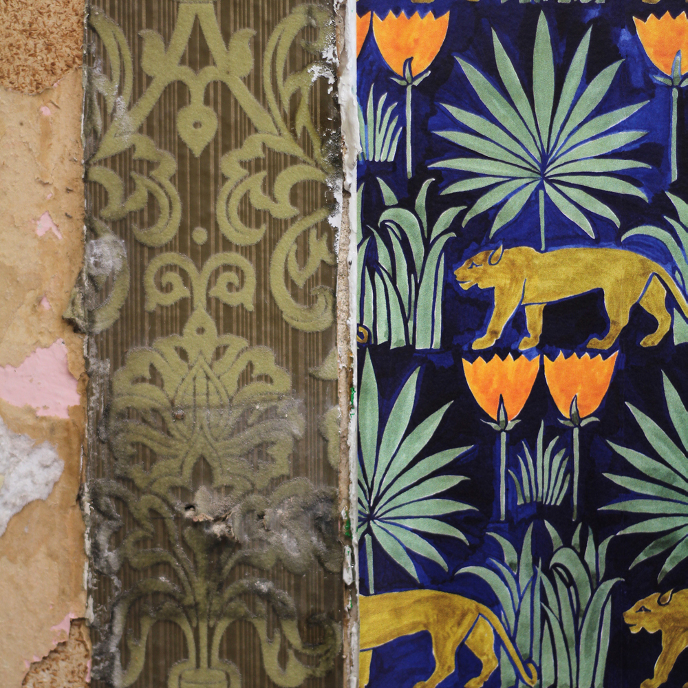 CommonRoom   Lioness & Palms Midnight
