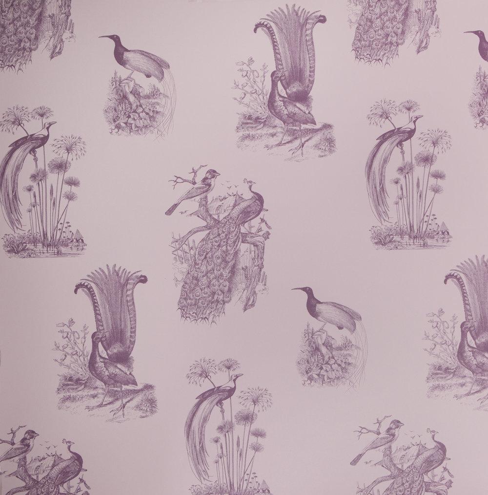 Abnormals Anonymous | Exotica Purple Rain