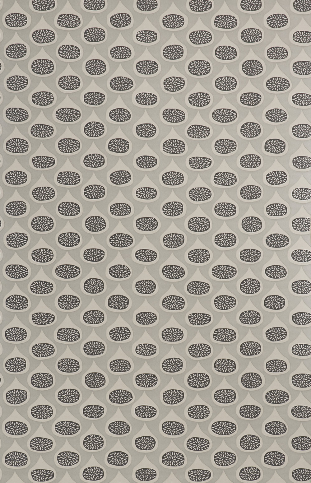 Miss Prints | Figs Sterling
