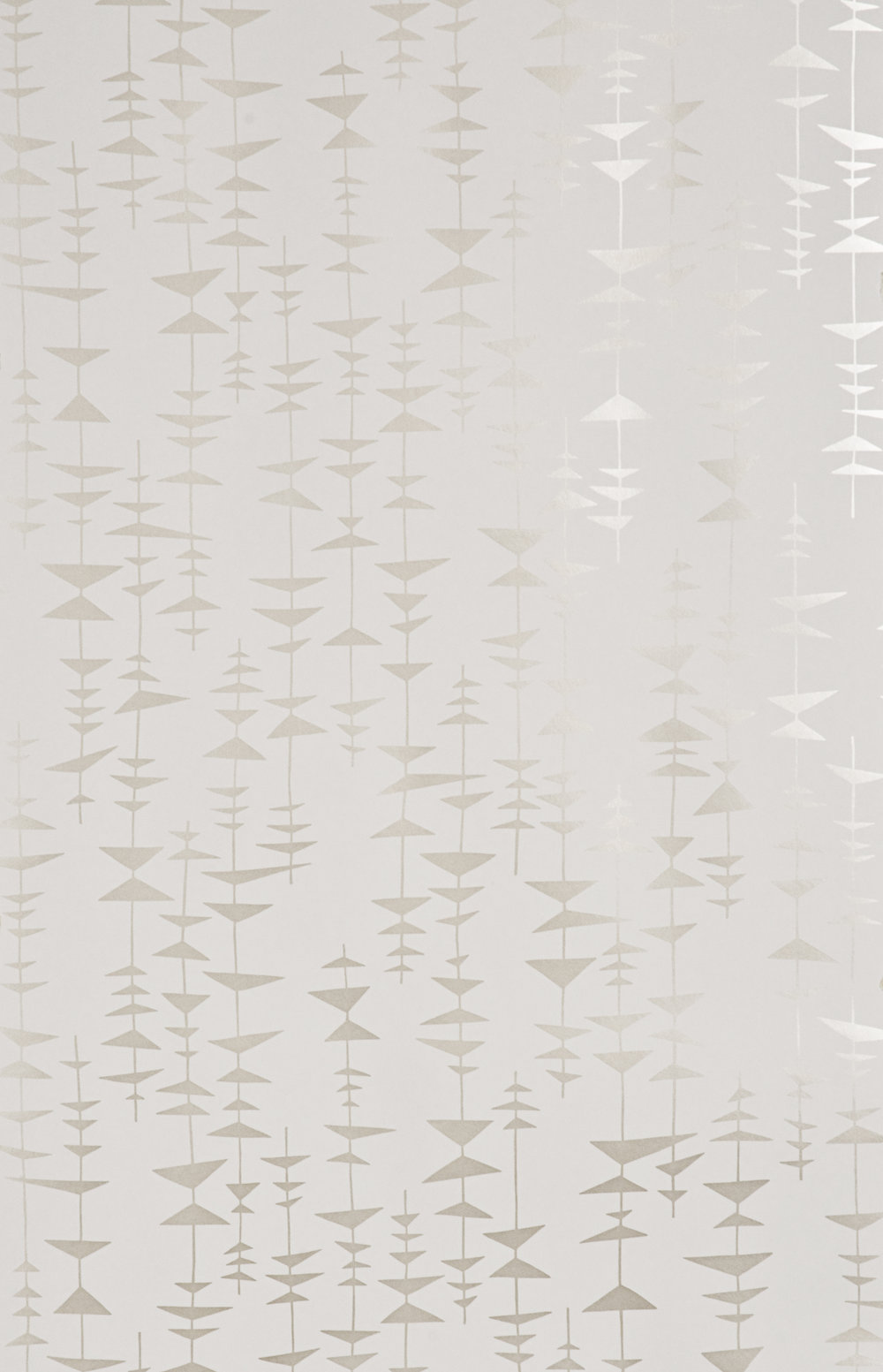 Miss Prints | Ditto Champagne