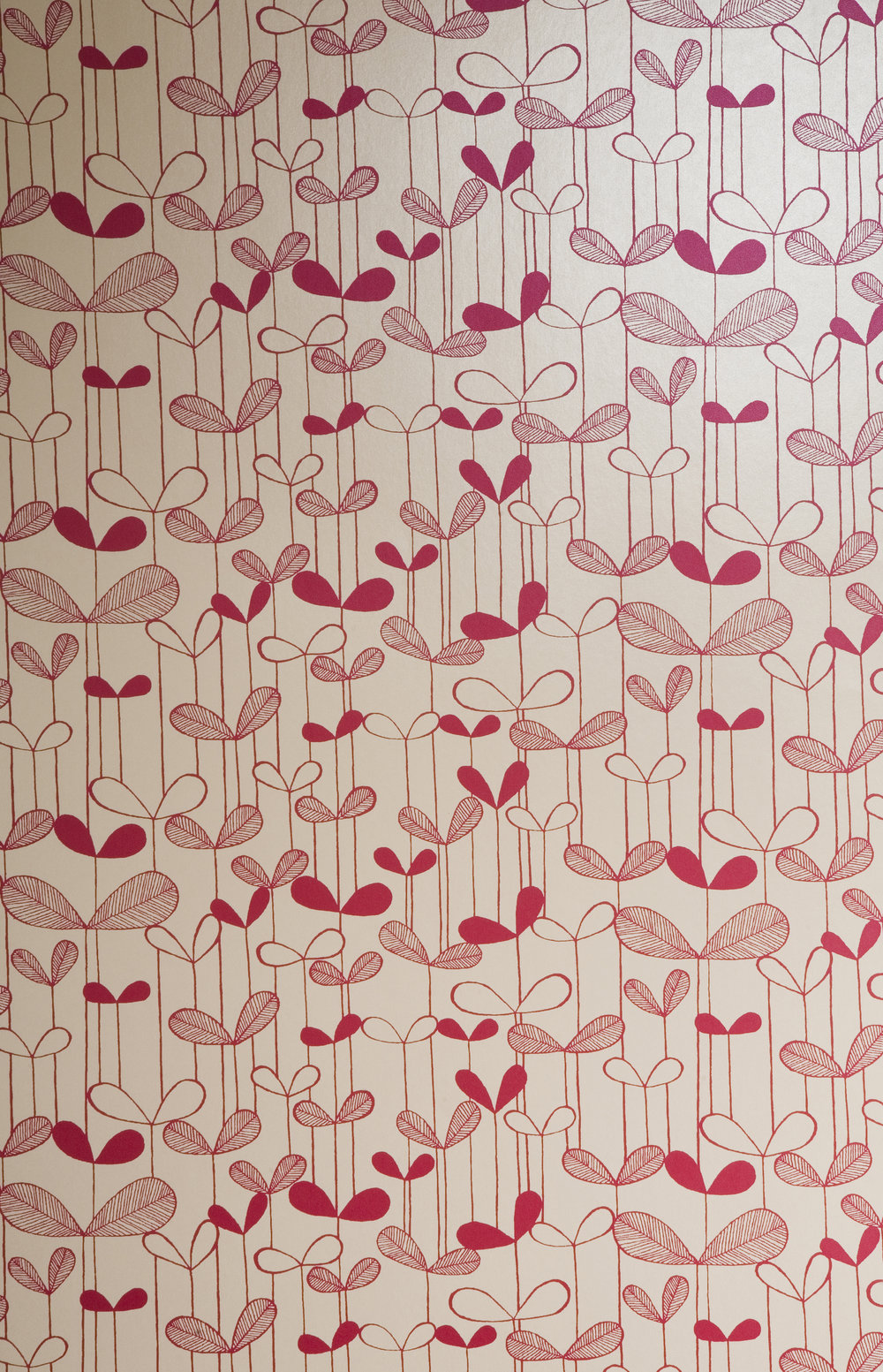 Miss Prints | Saplings Cream with Pink