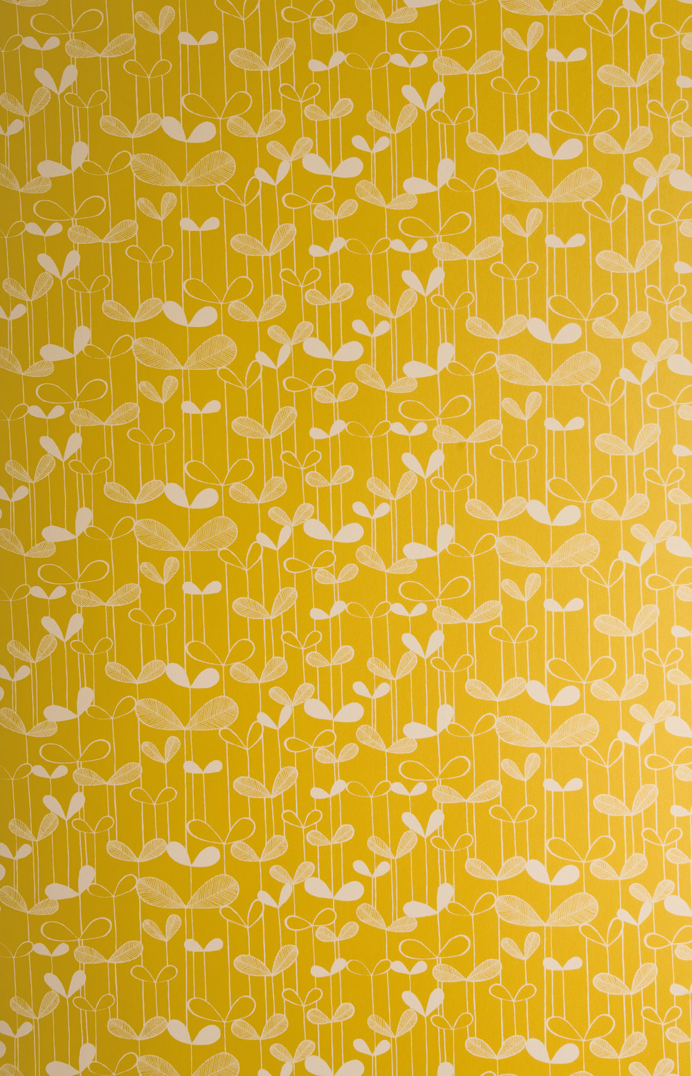 Miss Prints | Saplings Sunflower Yellow with White