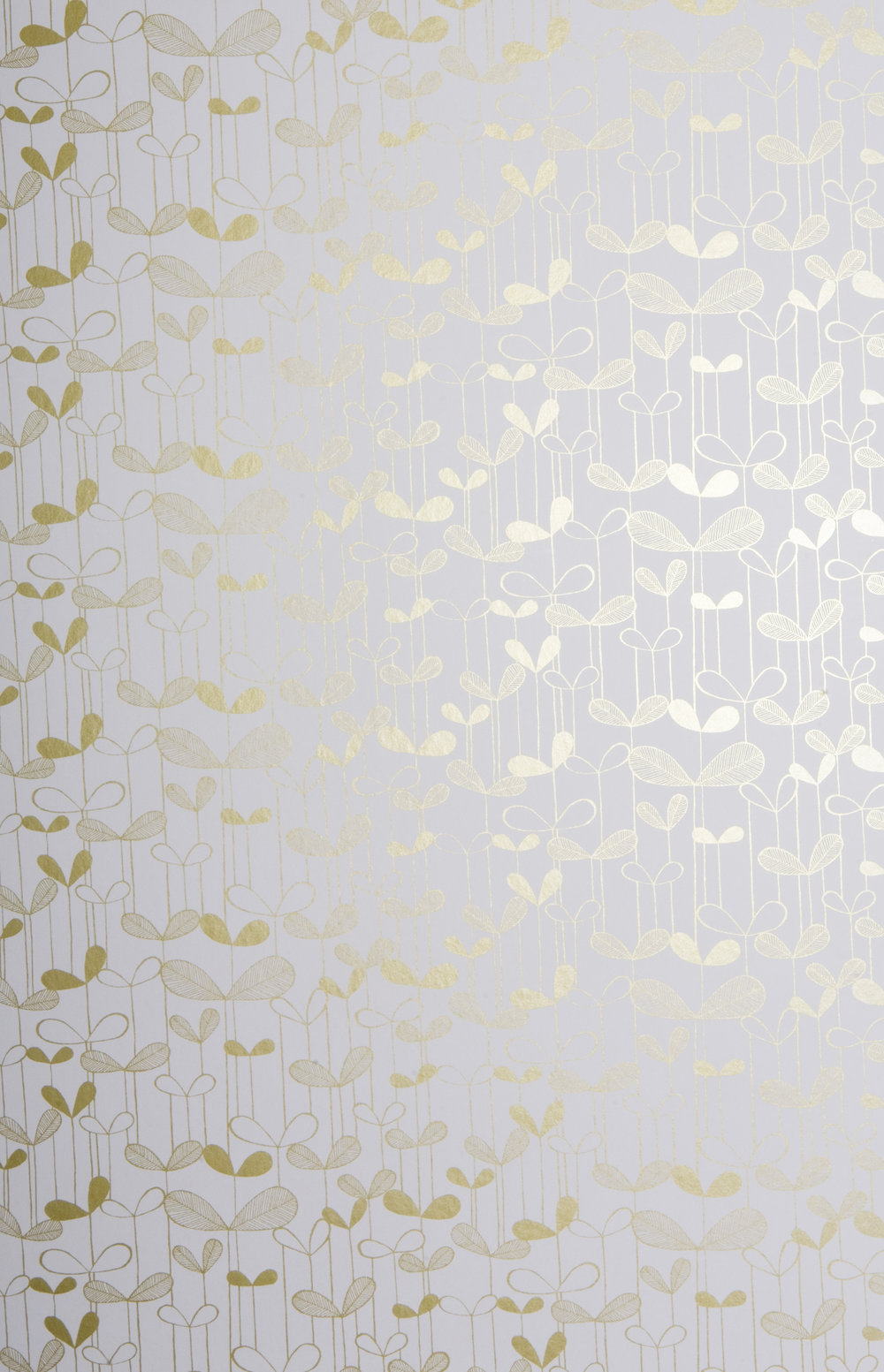 Miss Prints | Saplings White with Gold