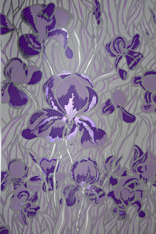 Iris Gentle Violet.jpg