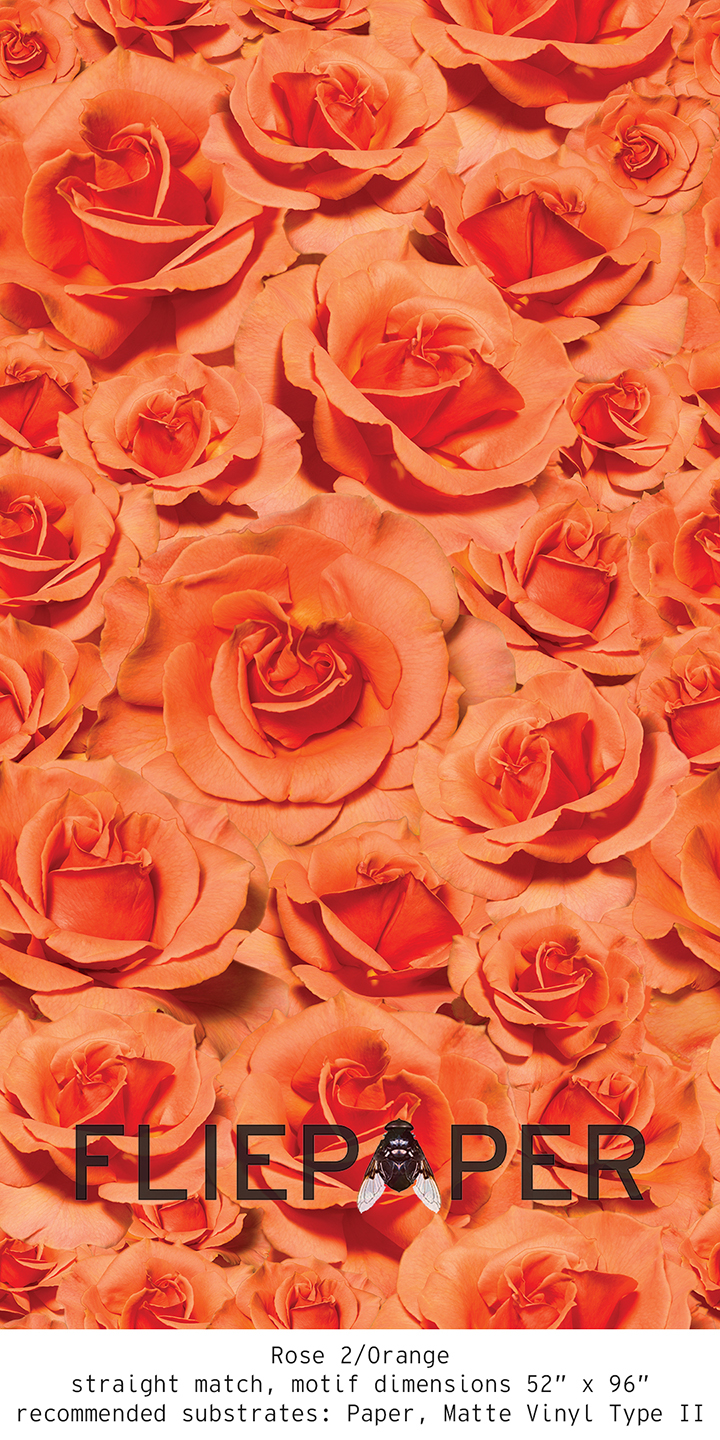 FliePaper_Main_Rose2_Orange.jpg