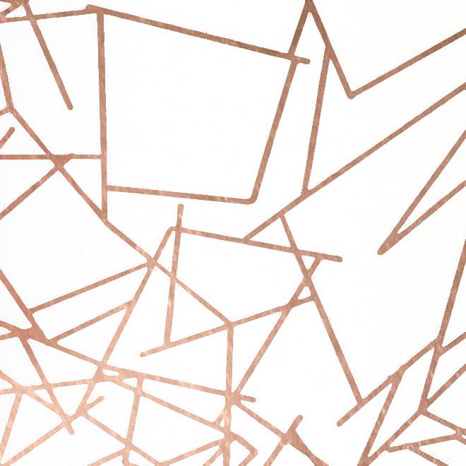 Angles005_copperrose_white3.jpg
