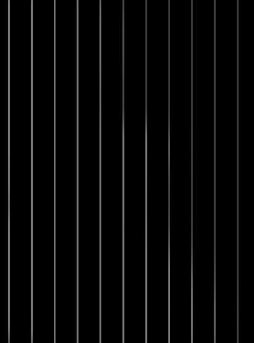 Pinstripe002_black_silver2.jpg
