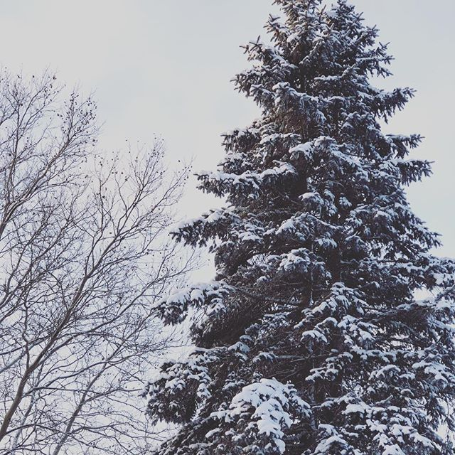 How many snow days has your school had this year? Come warm up at church for NowGen tonight, 7-8:30pm!
