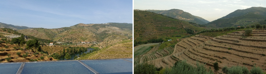 On the Left, the view towards the Douro river from Quinta de Napoles. On the right, the view from my bedroom!