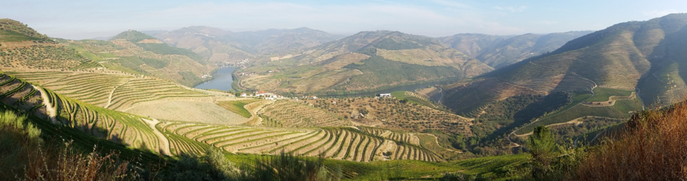 The Douro Valley is just magnificent!