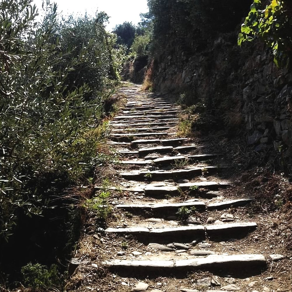 cinque terre steps