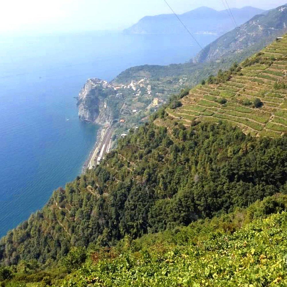 cinque+terre+cliff.jpg