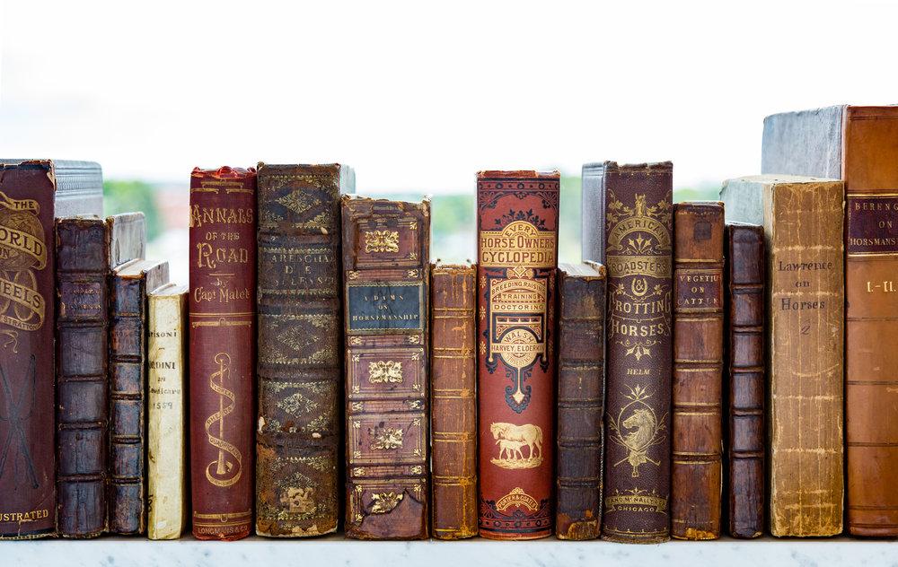 Horse Books - Set 2 -9449.jpg