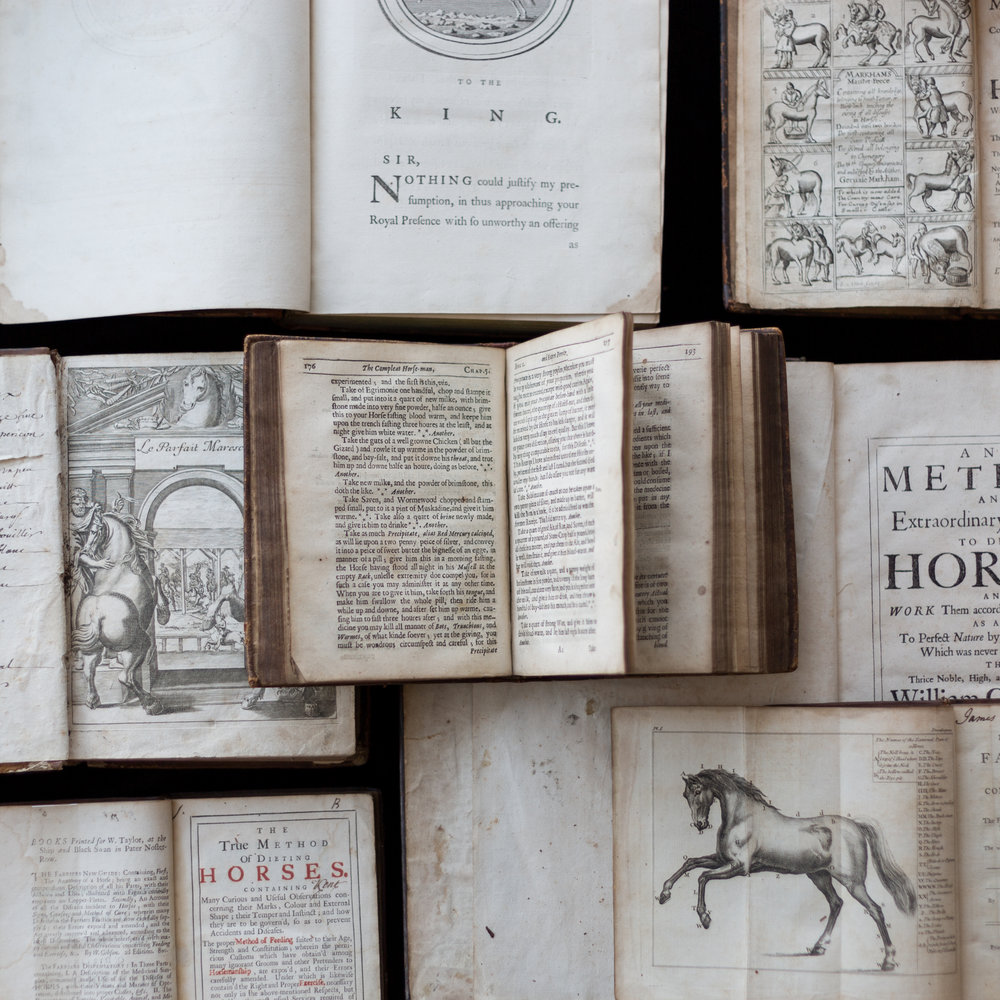 Horse Books - Set 2 -9237.jpg