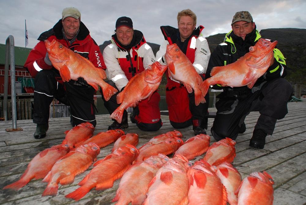 God rødfiske fangst