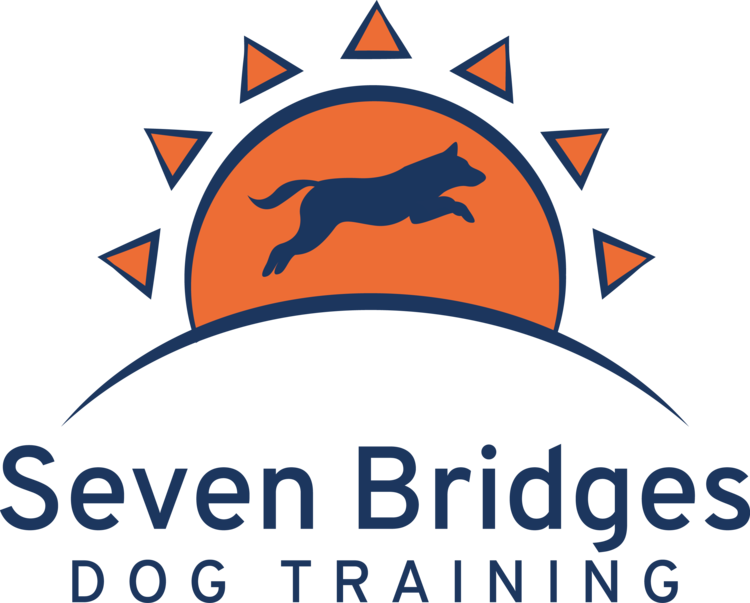 Seven Bridges Dog Training | Jacksonville FL | In-Home Training