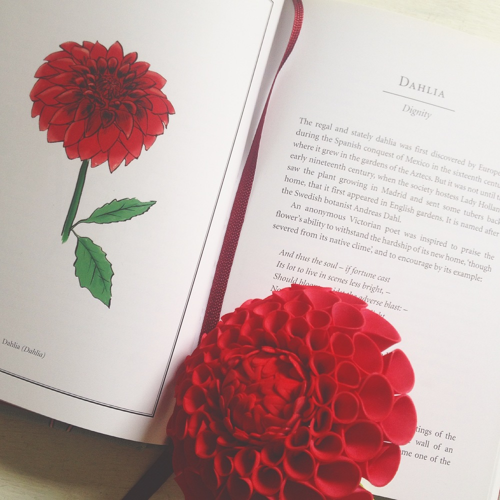 Dahlia sugar flower, Language of Flowers