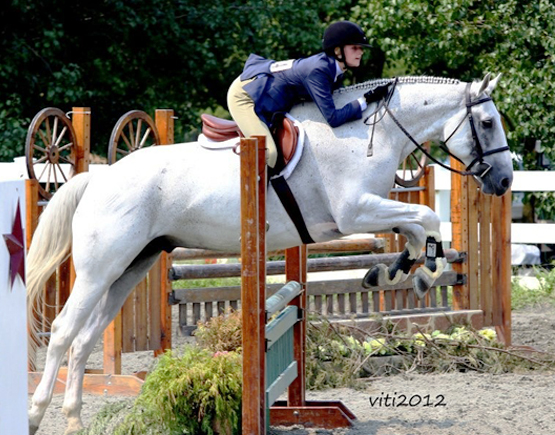 whispering-winds-equestrian-hunter-jumper-equitation.jpg