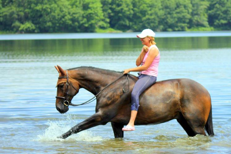 Helene Gregory & her trotter Jambalayabar Man (JB) cooling off in the lake.