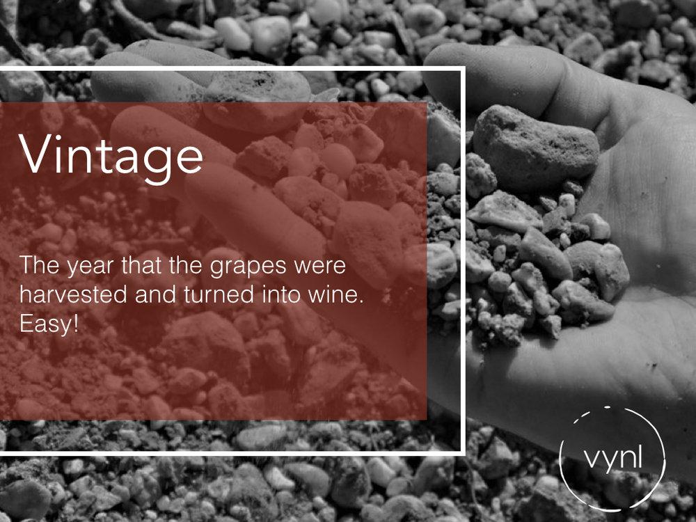 Wine Vintage.jpeg