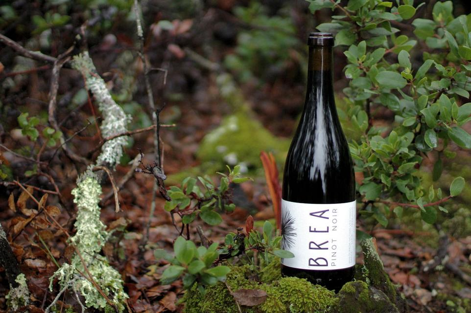 BREA Wine Co. Pinot Noir is one of the most exciting, and accessible pinots we have had in a long time!