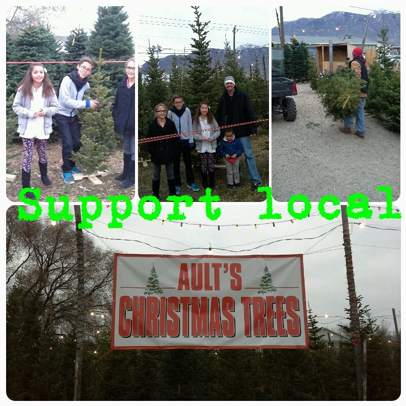 aultchristmastrees